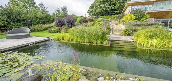Modernizing and rejuvenating existing Natural Pools